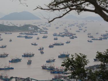 Musim penangkapan ikan di Laut China Timur