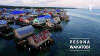 Penyuka Diving wajib mencoba menyelami keindahan bawah laut di Wakatobi, Sulawesi Tenggara.