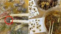 kecoak di dalam makanan (foto: Oriental Daily)
