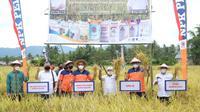Program Agro Solution Pupuk Kaltim berhasil meningkatkan hasil pertanian Gorontalo