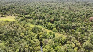 Hutan Desa Genting Tanah