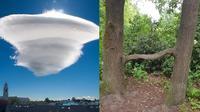 Potret 7 Fenomena Alam yang Jarang Terjadi Ini Bikin Geleng Kepala (sumber: Brightside)