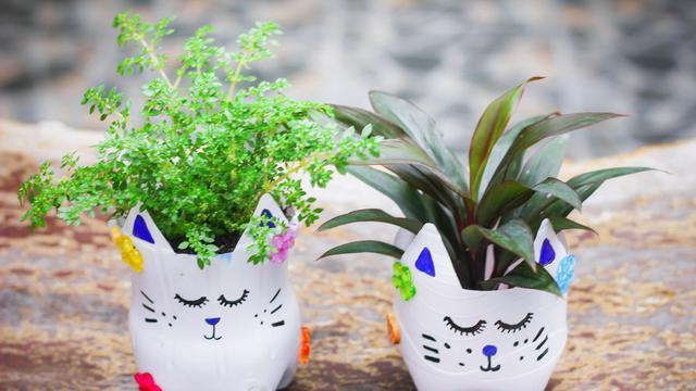 5 Cara Membuat Pot Bunga Lucu Dari Botol Bekas Selalu Kreatif Di Rumah Hot Liputan6 Com