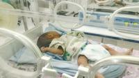 Ilustrasi – Bayi di dalam inkubator. (Foto: Liputan6.com/Muhamad Ridlo)