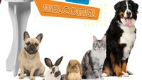Jakarta Indonesia Pet Show (dok. Instagram @indonesiapetshow/https://www.instagram.com/p/Bq1VQUaFmoq/Putu Elmira)