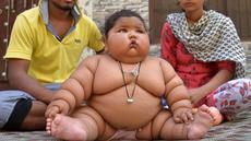 Bayi perempuan, Chahat Kumar, didampingi orangtuanya, Suraj dan Reenu, di rumah mereka di Amritsar, India, Senin (17/4). Meski usianya masih 8 bulan, berat badannya yang mencapai 17 kg membuat Chahat dijuluki bayi terberat di dunia. (NARINDER NANU/AFP)