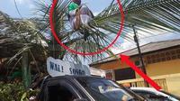 Orang Sakti yang meniru dandanan wali songo itu duduk di atas pelepah kelapa yang diarak dengan mobil pick up. (prokal/Jawapos)