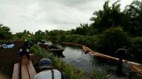 Tim Polda Riau dan Kementerian LHK membongkar illegal logging atau pembalakan liar di kawasan Cagar Biosfer Giam Siak Kecil, Bengkalis, Riau. (Liputan6.com/M Syukur)