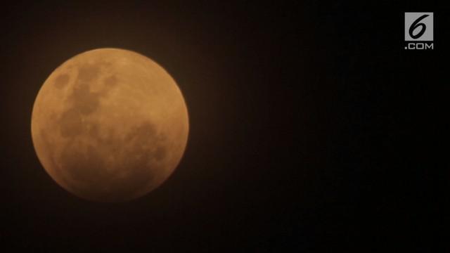 Para selebritas Tanah Air membagikan momen saat menyaksikan fenomena alam super blue blood moon.