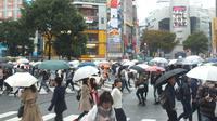 Mengunjungi Jepang, cobalah untuk menikmati sensasimelewati persimpangan Shibuya Crossing.  (Liputan6.com/Edu Krisnadefa)