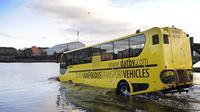 Sebuah perusahaan di Belanda merancang dan menghasilkan sejumlah jenis bus yang bersifat amfibi: bisa di darat dan di laut.