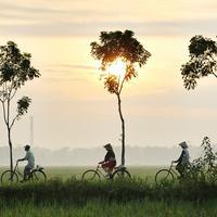 Masa Depan Indonesia Bahagia ada di Sekitar Rumah baik Desa atau Kota (Foto: Dok. Happiness Festival 2020)