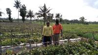 Kementan menggelar pelatihan untuk petani bekerja sama dengan BPP seperti di BPP Balung (istimewa)