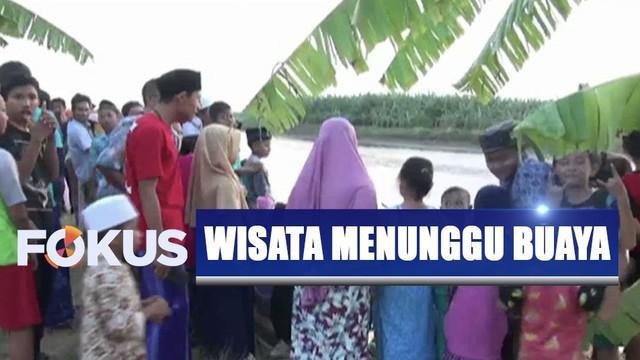 Mereka yang datang berasal dari luar desa duduk di pinggir sungai untuk melihat munculnya buaya di Sungai Bengawan Solo.