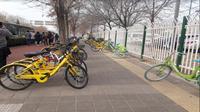 Mengintip deretan sepeda di Beijing (Foto:Liputan6.com/Agustina M)