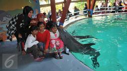 Pengunjung mendapat ciuman dari lumba-lumba saat Atraksi Dolphin Christmas Show di Ocean  Dream Samudera Ancol, Jakarta, Jumat (25/15/2015). Pertunjukan tersebut diadakan dalam rangka menyambut libur Natal. (Liputan6.com/Gempur M Surya)