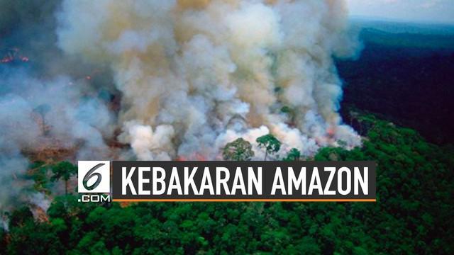 Kebakaran hutan hujan Amazon jadi rekor terbaru tahun ini. Kebakaran telah menyebar ke beberapa negara bagian Amazon di barat laut Brazil.
