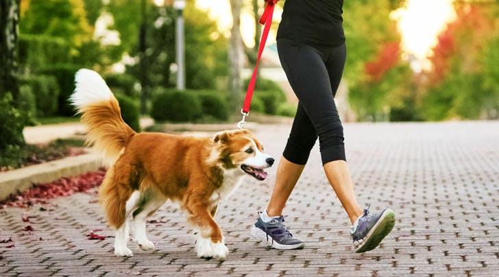 Sebenarnya, berapa banyak sih jumlah langkah yang dibutuhkan tubuh setiap harinya? (Sumber Foto: SteveColeImages/Getty Images)