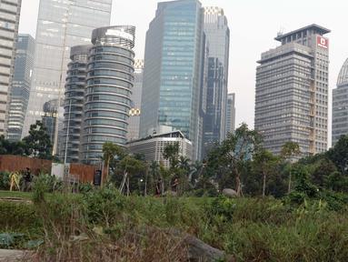 Warga berjalan di area Hutan Kota Gelora Bung Karno, Jakarta, Kamis (20/6/2019). Sore hari banyak warga memanfaat waktu luang dengan berolahraga dan menyalurkan hobi fotografi di area Hutan Kota Gelora Bung Karno. (Liputan6.com/Helmi Fithriansyah)