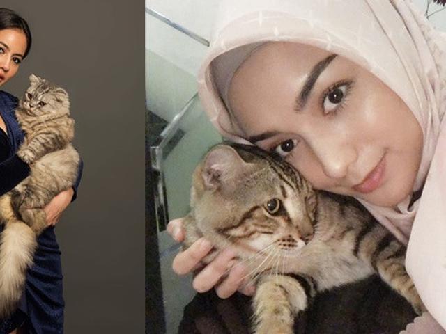 5 Seleb Cantik Tanah Air Ini Pecinta Kucing Sama Sama Bikin Gemas Hot Liputan6 Com