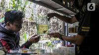 Pekerja menunjukkan ikan cupang hias di Galeri Simprug Betta Fish, Jakarta, Jumat (7/8/2020). Ikan cupang hias di sini dijual dengan harga Rp 50 ribu hingga Rp 3,5 juta per ekor. (Liputan6.com/Johan Tallo)