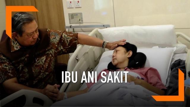 Ani Yudhoyono dirawat di Singapura karena sakit kanker darah. Lewat akun instagramnya, ibu Ani ungkap kekagetannya saat dokter memberitahu perihal penyakitnya.