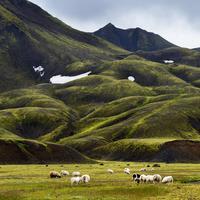 Islandia. (Getty)