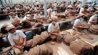 Ratusan buruh Indonesia bekerja di pabrik tembakau di pabrik rokok di Jember (13/2/2012). (AFP / ARIMAC WILANDER)