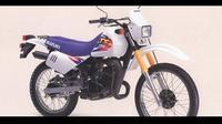 Suzuki TS 125 ER (Classic-motorbikes.net)