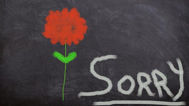 Ingin Menyampaikan Permintaan Maaf Ke Seseorang Sontek 5