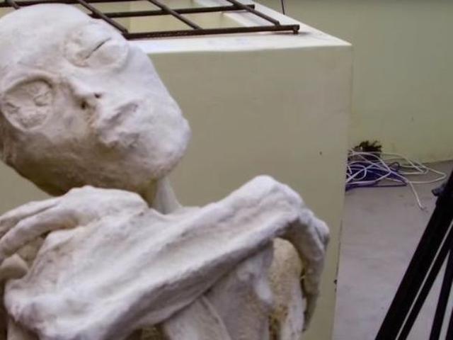 Misteri Kerangka Berjari Tiga Yang Ditemukan Di Samping Mumi Bayi Citizen6 Liputan6 Com