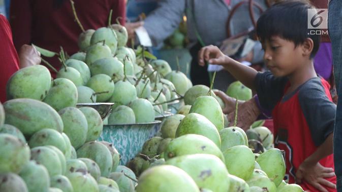 Seorang anak mengamati buah mangga yang dijajakan di Jalur Pantura Indramayu, Jawa Barat, Kamis (29/6). Berbagai jenis mangga seperti gedong, arum manis dan golek menjadikan buah ini oleh-oleh khas daerah Indramayu. (Liputan6.com/Helmi Afandi)