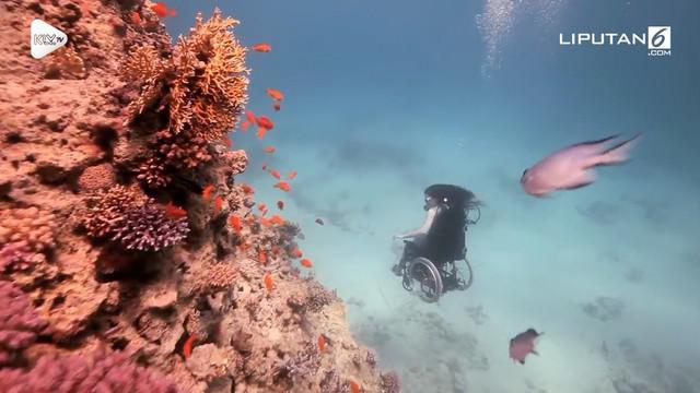 Dia adalah Sue Austin, penyandang disabilitas yang membuktikan bahwa dirinya bisa menyelam di bawah air.