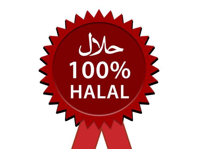 710 Gambar Binatang Halal Dan Penjelasannya Gratis