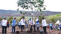 Presiden Joko Widodo dan Ibu Negara Iriana Joko Widodo menanam pohon dalam acara  peringatan Hari Menanam Pohon Indonesia di Kalimantan Selatan