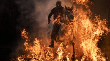 Seorang pria menunggangi kuda melewati api unggun saat festival Luminarias di San Bartolome de Pinares, Spanyol, Rabu (16/1). Festival ini digelar setiap tahunnya, sehari sebelum perayaan Santo Antonius yang merupakan pelindung binatang. (AP/Felipe Dana)