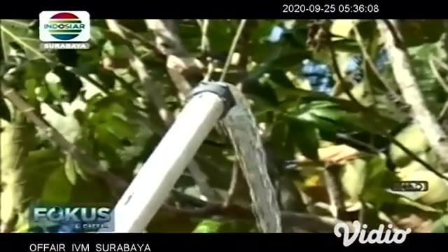 Tokoh warga Desa Sambong Kecamatan Pacitan berupaya keras bisa memanfaatkan sumur pompa dalam atau sumur bor bantuan dari Pemerintah Provinsi Jawa Timur yang sudah lama tidak dipergunakan.