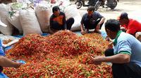 Harga bawang merah di tingkat petani sentra utama seperti Brebes, Nganjuk, Indramayu, Kendal, Malang, Solok, Majalengka dan Enrekang antara Rp 15.000 hingga Rp 20.000 per kilogram.