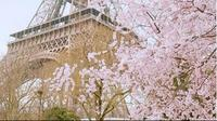 Bunga sakura di dekat Menara Eiffel, Paris. (dok.Instagram @paris_ashgraphy/https://www.instagram.com/p/BRqbkEShu2w/Henry