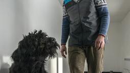 Kepala proyek Gustav Hotovy berdiri di belakang anjing Schnauzer besarnya di pusat pelatihan anjing pelacak COVID-19, Kliny, Republik Ceko, 22 Januari 2021.  Sampel yang digunakan diperoleh hanya dengan menggosokkan selembar kapas ke kulit pasien COVID-19. (Michal Cizek/AFP)