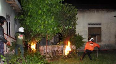 Serangan Tawon di Sragen Telan Korban, Warga Saradan Dilarikan ke RS