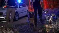 ilustrasi polisi melakukan penyelidikan. (iStockphoto)