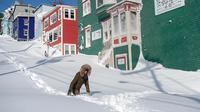 Warga berjalan melewati salju di Kota St John's, Newfoundland, Kanada, Sabtu (18/1/2020). (Andrew Vaughan/The Canadian Press via AP)