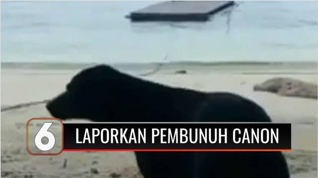 Koalisi Perlindungan Hewan Indonesia (KPHI) melaporkan kasus kematian seekor anjir bernama Canon ke Kepolisian Aceh Singkil. Anjing ini diduga mati saat dievakuasi oleh petugas Satpol PP di kawasan wisata Pulau Panjang, Aceh, beberapa waktu lalu.