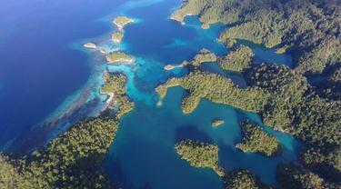 Menyelam di Guraici Halmahera Selatan, Bisa Diadu dengan Raja Ampat