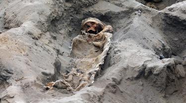 Gambar tak bertanggal memperlihatkan tulang belulang anak-anak yang ditemukan para arkeolog di Pampa La Cruz, sebuah kota pesisir Trujillo, Peru. Ditemukan sekitar 227 kerangka anak yang diduga menjadi korban ritual peradaban masa lampau tepatnya pada masa peradaban Chimu. (LUIS PUELL/ANDINA/AFP)