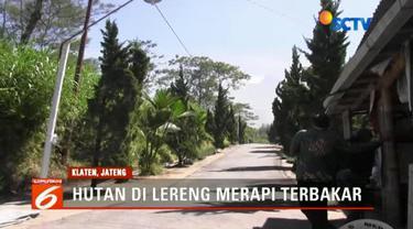 Hutan di lereng Gunung Merapi terbakar akibat terkena material jatuhan (balistik) letusan freatik.