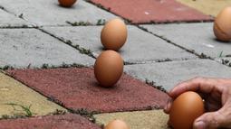 Sejumlah warga etnis Tionghoa mendirikan telur ayam pada dalam perayaan Peh Cun di Pasar Lama, Kota Tangerang, Kamis (9/6). Hari ini tepat pukul 12.00 WIB telur ayam bisa berdiri. (Liputan6.com/Fery Pradolo)