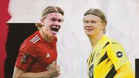 Ilustrasi Erling Haaland di Manchester United dan Borussia Dortmund. (Bola.com/Dody Iryawan)