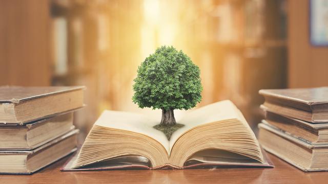30 Kata Kata Hikmah Sejukkan Hati Bisa Bikin Kamu Makin
